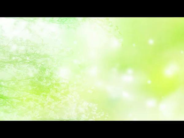 ハニープラザの求人動画