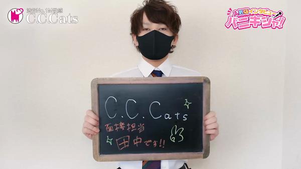 C.C.Cats(シーシーキャッツ)のスタッフによるお仕事紹介動画
