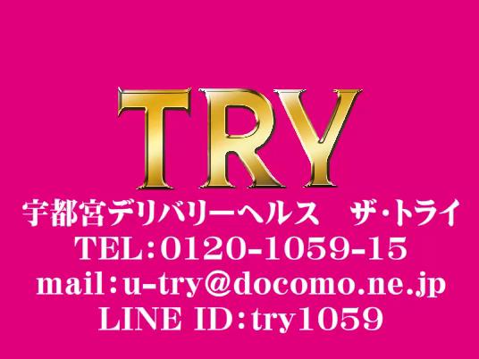 THE・TRYのお仕事解説動画