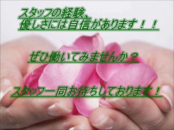 新宿プチドールのお仕事解説動画