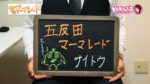 五反田マーマレードのバニキシャ(スタッフ)動画