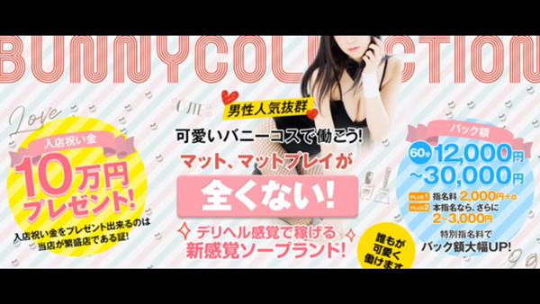 バニーコレクション秋田のお仕事解説動画