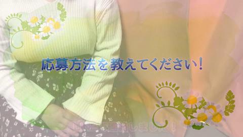 愛されぽっちゃり倶楽部 古川店のお仕事解説動画