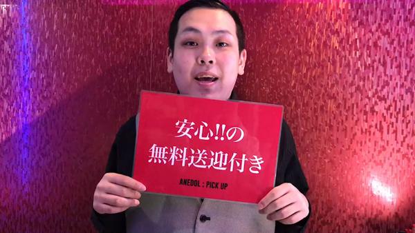 AneDol(アネドル)のお仕事解説動画