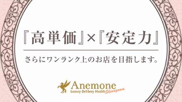 アネモネ Anemone 品川の求人動画