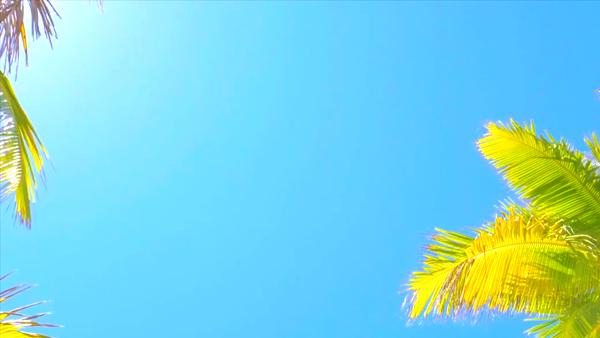 Aroma De Paris -アロマデパリ-梅田店の求人動画