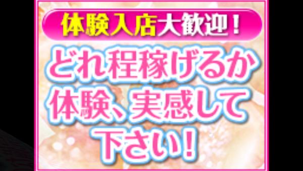 横浜アローの求人動画