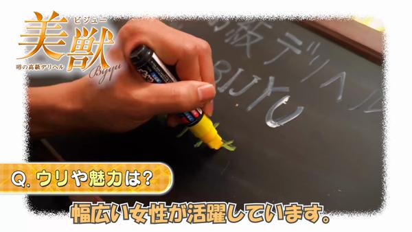噂の高級デリヘル 美獣 BIJYUのお仕事解説動画