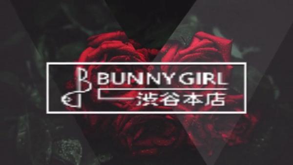 BUNNY GIRL(モンキーグループ)の求人動画