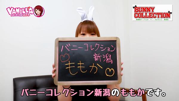 バニーコレクション新潟に在籍する女の子のお仕事紹介動画