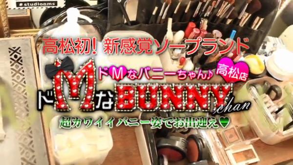 ドMなバニーちゃん 香川・高松店の求人動画