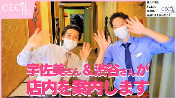 川崎ソープ CECIL PLUSのお仕事解説動画