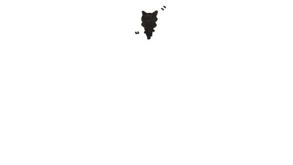 旭川 ココルルの求人動画