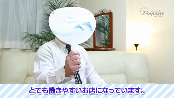姫路ドルフィンのお仕事解説動画