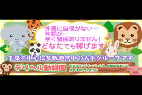 デリヘル動物園のお仕事解説動画