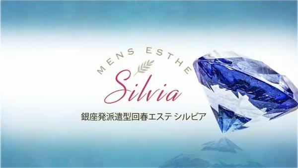 Silvia銀座~シルビア~のお仕事解説動画