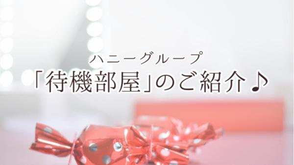 五反田アネージュ(ユメオトグループ)のお仕事解説動画