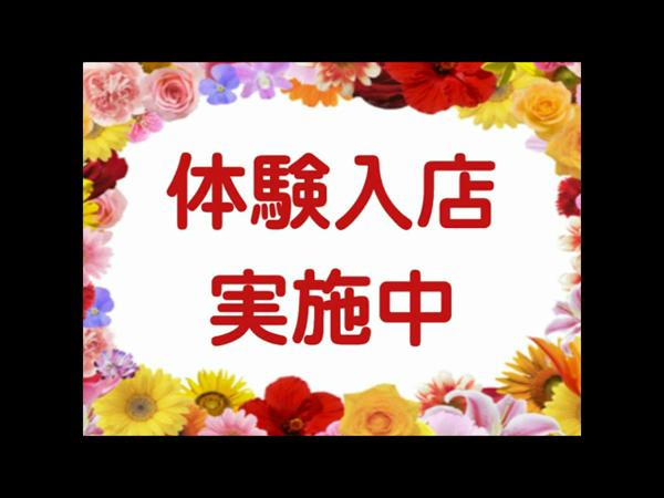 沼津人妻花壇の求人動画