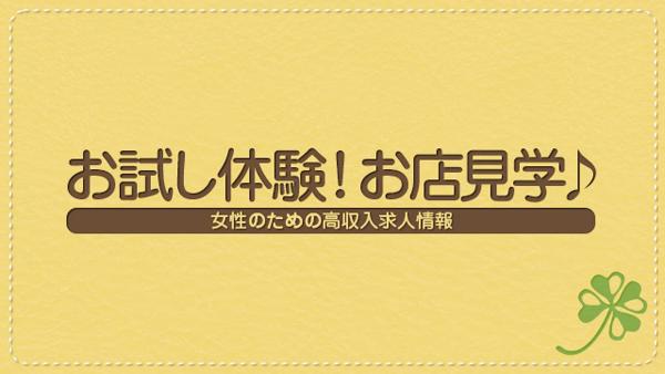 ハレ系(熊本)の求人動画