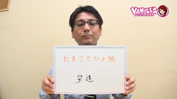 たまごとひよ娘(札幌ハレ系)のバニキシャ(スタッフ)動画