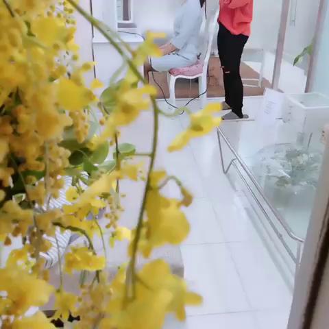 東京ヒストリー lettre d'amourの求人動画