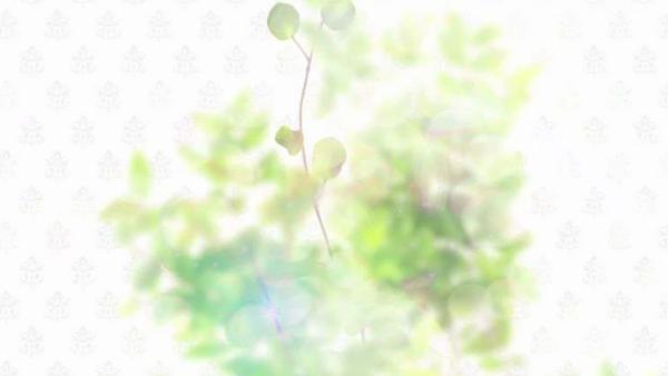 ハイブリッドヘルス小岩中央のお仕事解説動画