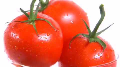 トマトの思い出のお仕事解説動画
