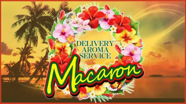 癒しのマカロンの求人動画