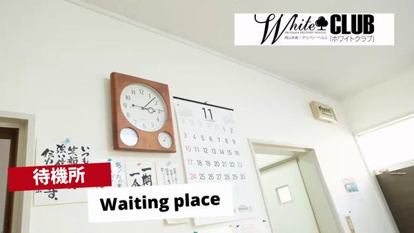 WhiteCLUBのお仕事解説動画