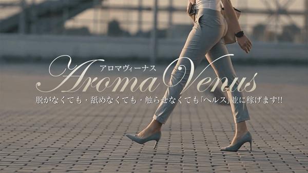 千葉アロマヴィーナスグループのお仕事解説動画
