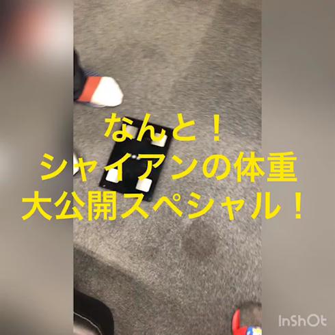 カミチチ 7のお仕事解説動画