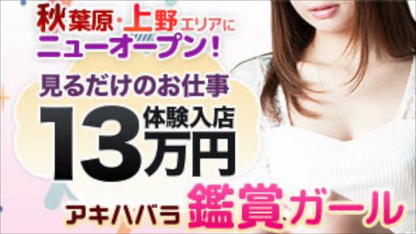 秋葉原 鑑賞ガールのお仕事解説動画