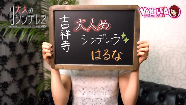吉祥寺大人めシンデレラに在籍する女の子のお仕事紹介動画