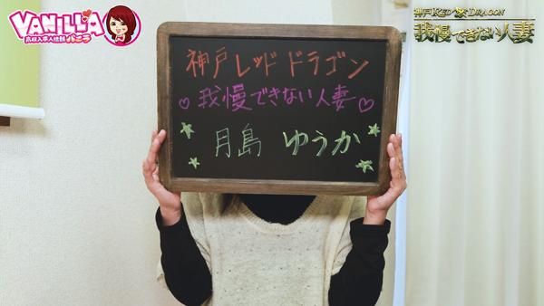 神戸レッドドラゴンに在籍する女の子のお仕事紹介動画