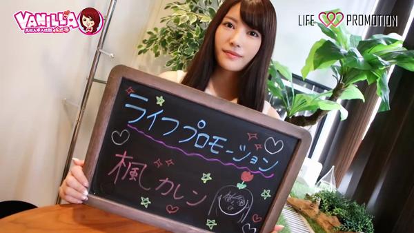 株式会社ライフプロモーションに在籍する女の子のお仕事紹介動画