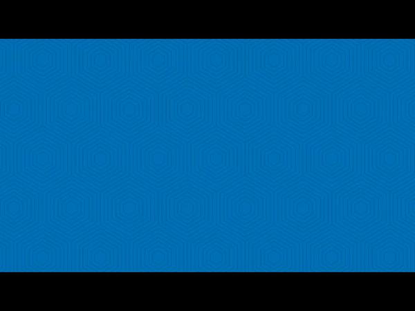 マハラジャの求人動画