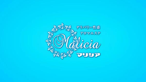 マリシアのお仕事解説動画