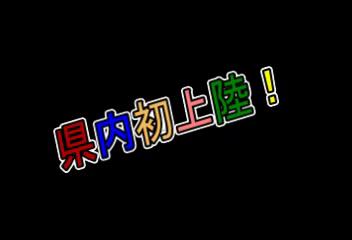 ぽちゃかわアイドルNo1もえたん!のお仕事解説動画