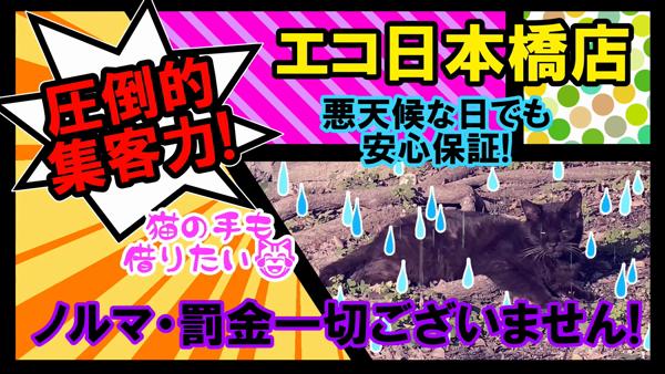 エコ 日本橋店の求人動画