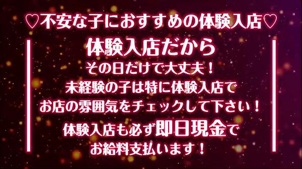 ドM女学園日本橋校の求人動画