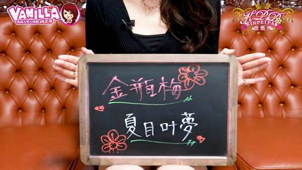 金瓶梅に在籍する女の子のお仕事紹介動画