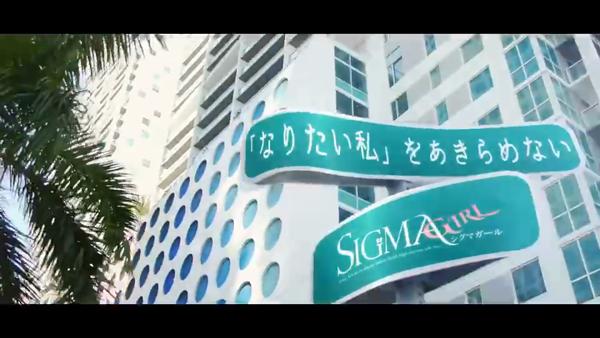 シグマグループ岡山のお仕事解説動画