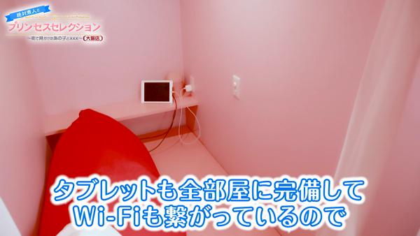 プリンセスセレクション大阪のお仕事解説動画