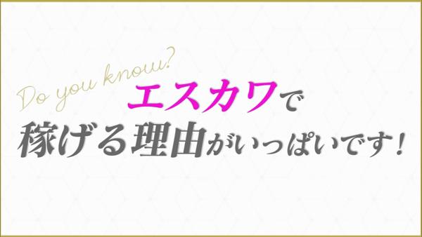 Skawaii(エスカワ)大阪店の求人動画