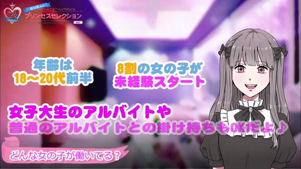 プリンセスセレクション梅田店のお仕事解説動画