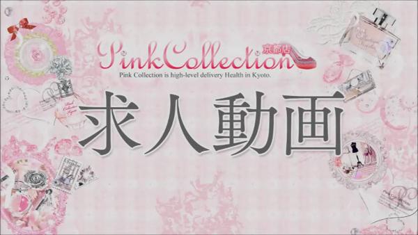 ピンクコレクション京都の求人動画