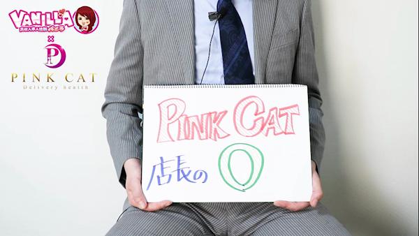 PINK CATのバニキシャ(スタッフ)動画