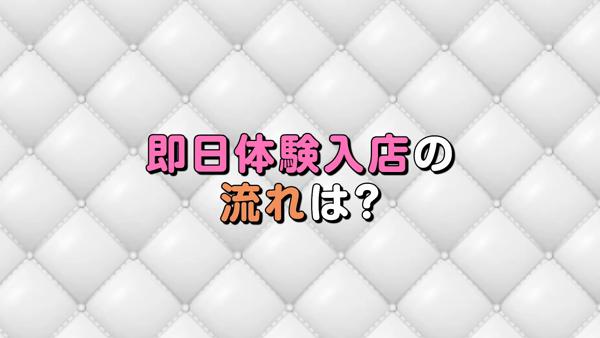 Platinum Ladyのお仕事解説動画