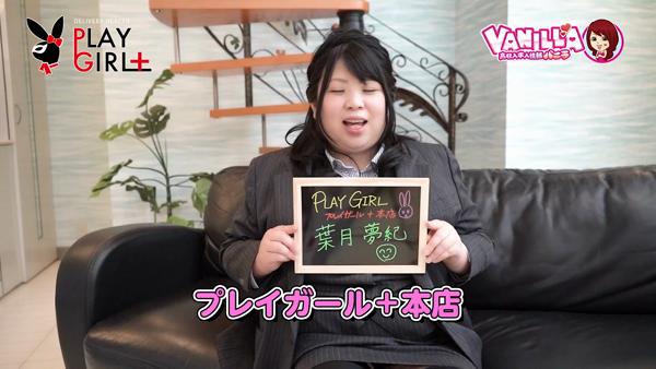 プレイガール+本店のお仕事解説動画