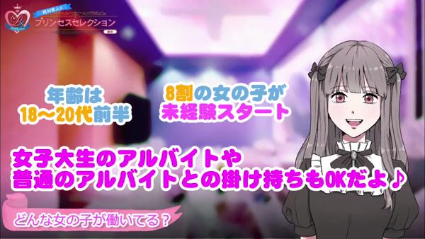 プリンセスセレクション姫路の求人動画